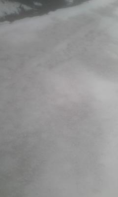 c0118013_14463828.jpg