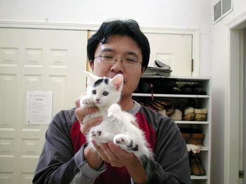 我が家の猫たち_a0173527_14573546.jpg