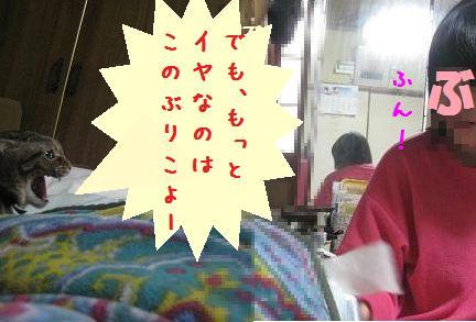 b0151748_1226156.jpg