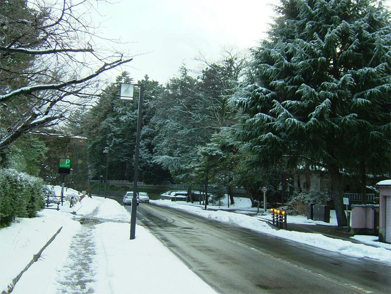 雪見ジョギング♪_c0110051_1075724.jpg