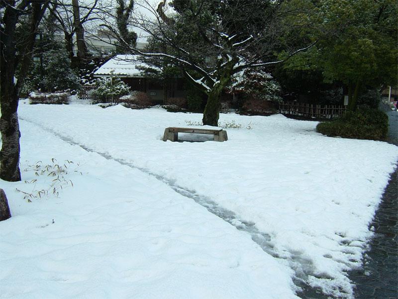 雪見ジョギング♪_c0110051_1081487.jpg