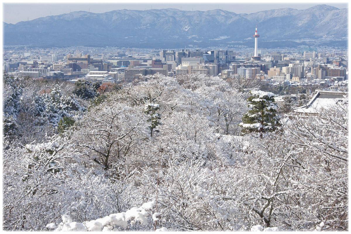 雪景色 <京都タワー>_f0021869_21425096.jpg