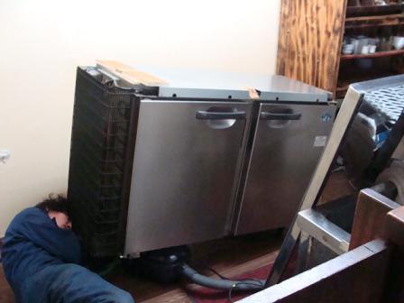 棚から冷蔵庫へ_a0195373_082210.jpg