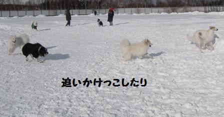 f0212597_14195469.jpg