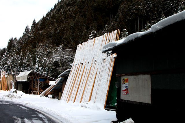 雪景色 杉坂_e0048413_11522022.jpg