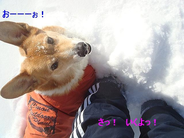 かいたく ちう_e0147716_8203972.jpg