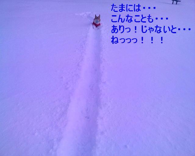 かいたく ちう_e0147716_8223215.jpg