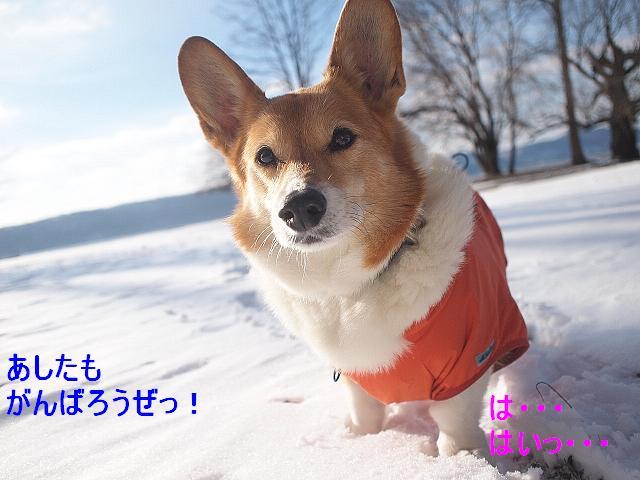 かいたく ちう_e0147716_8233410.jpg