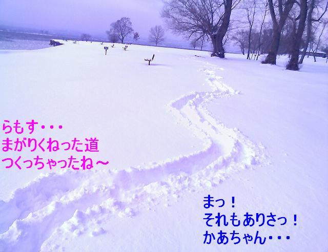 かいたく ちう_e0147716_82342.jpg