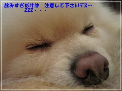b0167519_109914.jpg