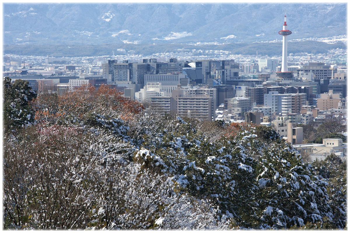 雪景色 <清水寺>_f0021869_2231181.jpg