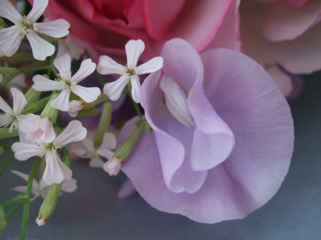 オークリーフ(バラ・ピンクイブピアッチェとスイートピーの花束)_f0049672_1438331.jpg