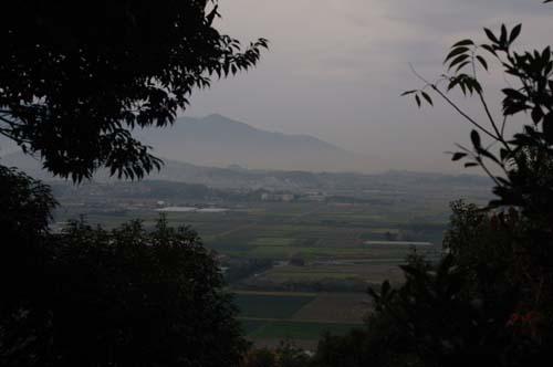 2010九州の旅で見たこと  第4日_f0211178_17445818.jpg