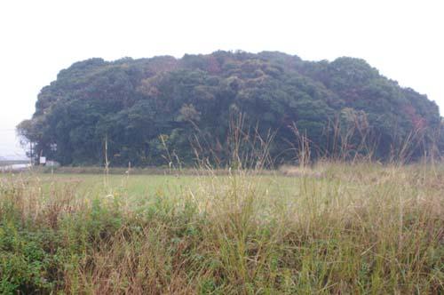 2010九州の旅で見たこと  第4日_f0211178_1746785.jpg