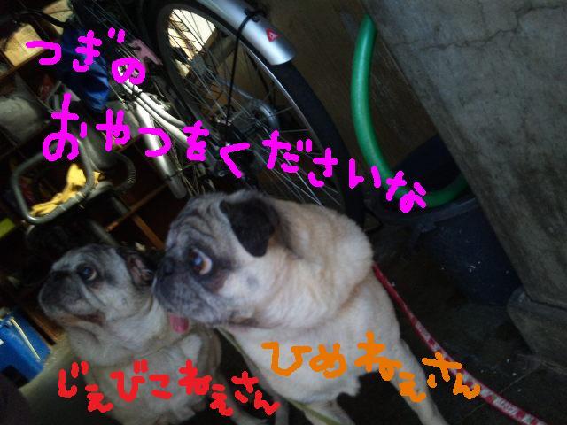 レッツ★商店街_d0187891_121072.jpg