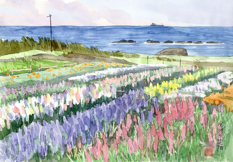 外房のお花畑線のある絵と そうでない絵を交互に描いてみる 外房のお花畑