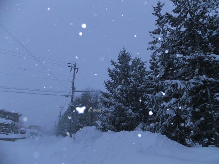 雪の朝_b0103798_5412247.jpg