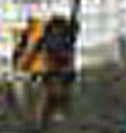 e0103408_10253312.jpg
