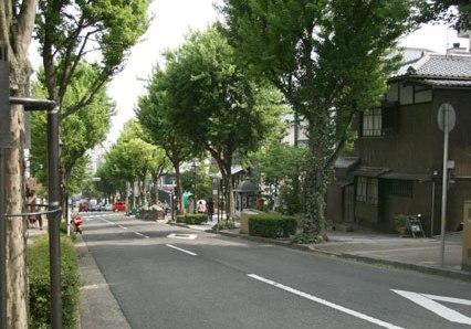 近道 (20枚)_a0152009_20501827.jpg