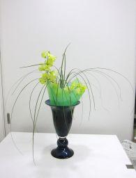 生の植物と異質素材_c0165824_125153.jpg
