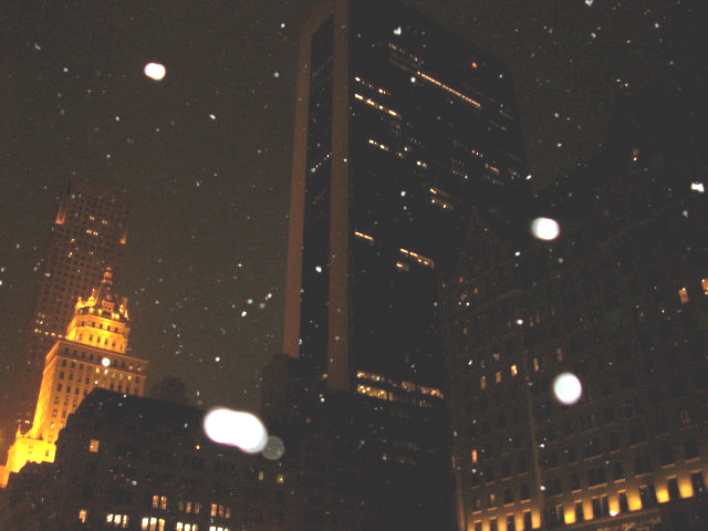 雪の降る街_c0194753_12524231.jpg