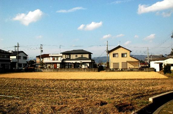 田舎にて_b0093754_233098.jpg