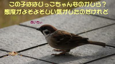 b0158061_2201991.jpg