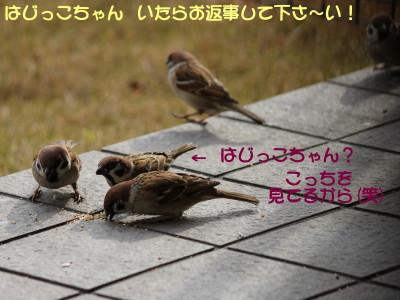 b0158061_2202755.jpg