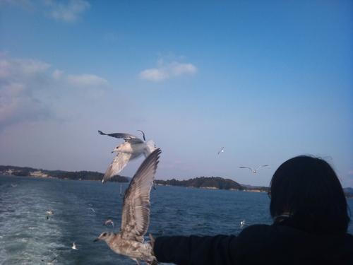 松島や〜_c0100865_14181614.jpg
