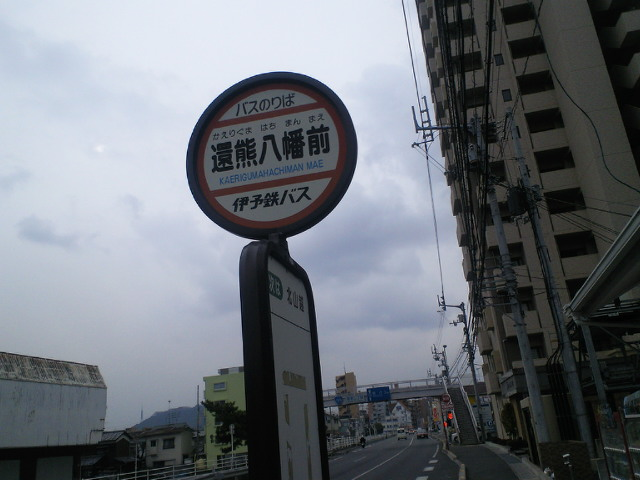 くま_c0001670_1151037.jpg