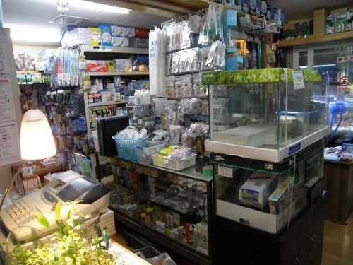 店舗潜入その5(店舗左側用品ごちゃごちゃコーナーその1)_a0193105_15552182.jpg