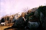 糸島市の大入海岸から二丈岳720Mに登った (第48話)_a0154912_21485335.jpg