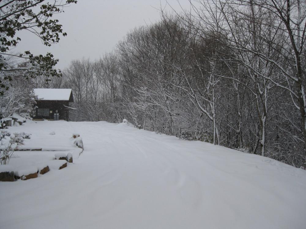 今朝も冷えました~。_c0218213_17472978.jpg