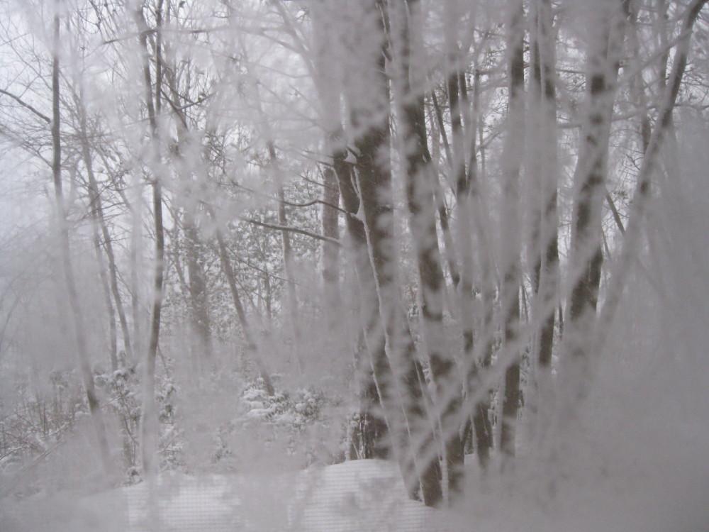 今朝も冷えました~。_c0218213_17474256.jpg