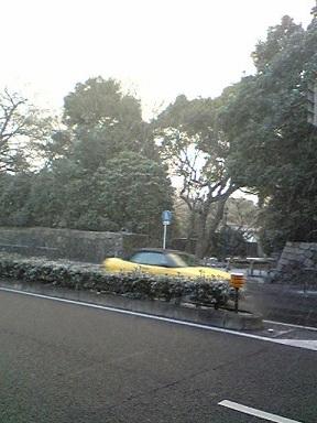 雪!_f0068517_2043468.jpg