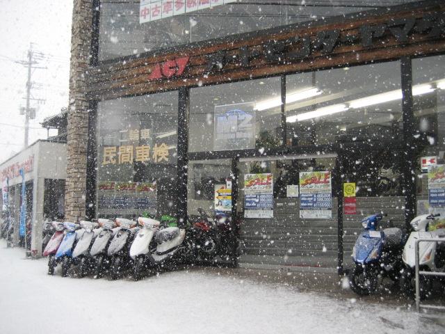 雪降りなう!_a0169121_9543017.jpg