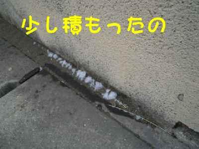 c0166622_20442097.jpg