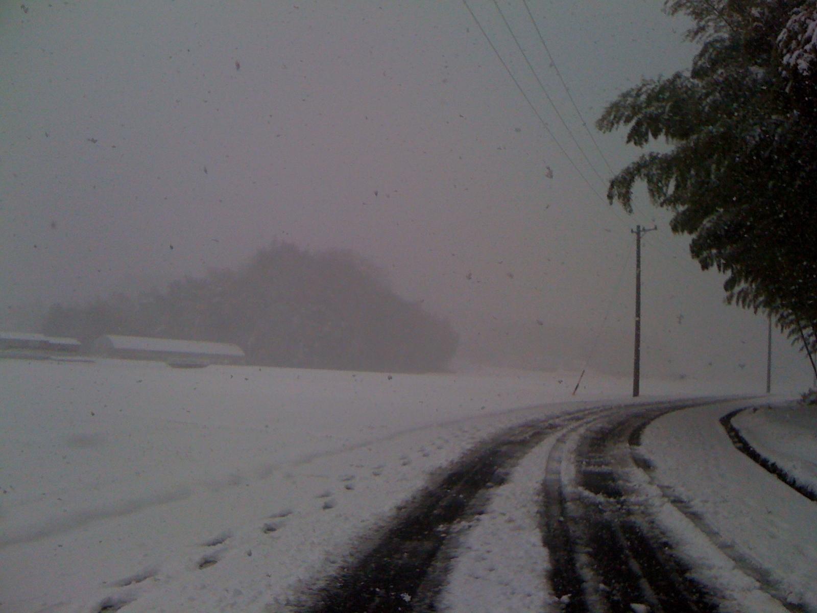 三重県北部 大雪_c0061727_2020224.jpg