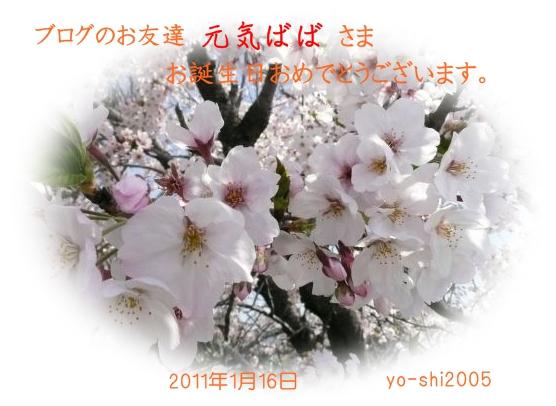e0033229_9201243.jpg