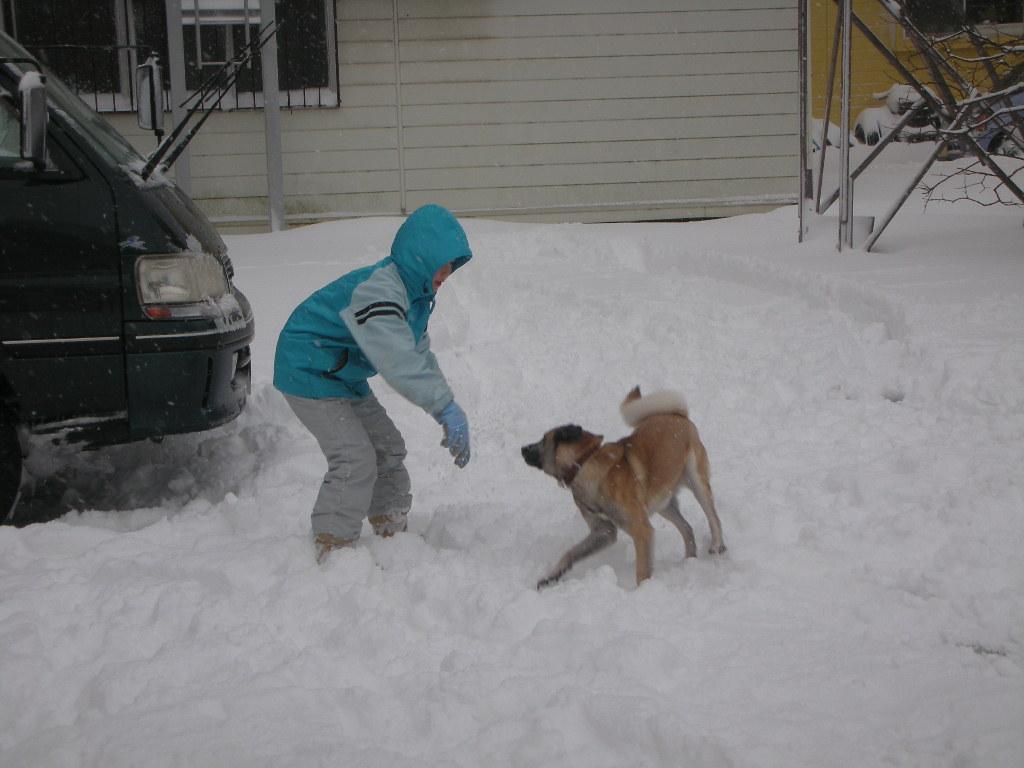 大雪!_a0156636_21234977.jpg