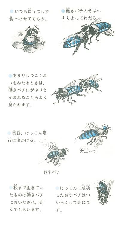 b0043338_2554776.jpg