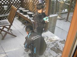 雪ですね・・・_a0139242_10474692.jpg