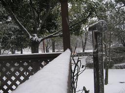 雪ですね・・・_a0139242_75125100.jpg