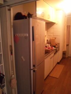 冷蔵庫がきましたぁぁぁあ_e0114246_22151891.jpg