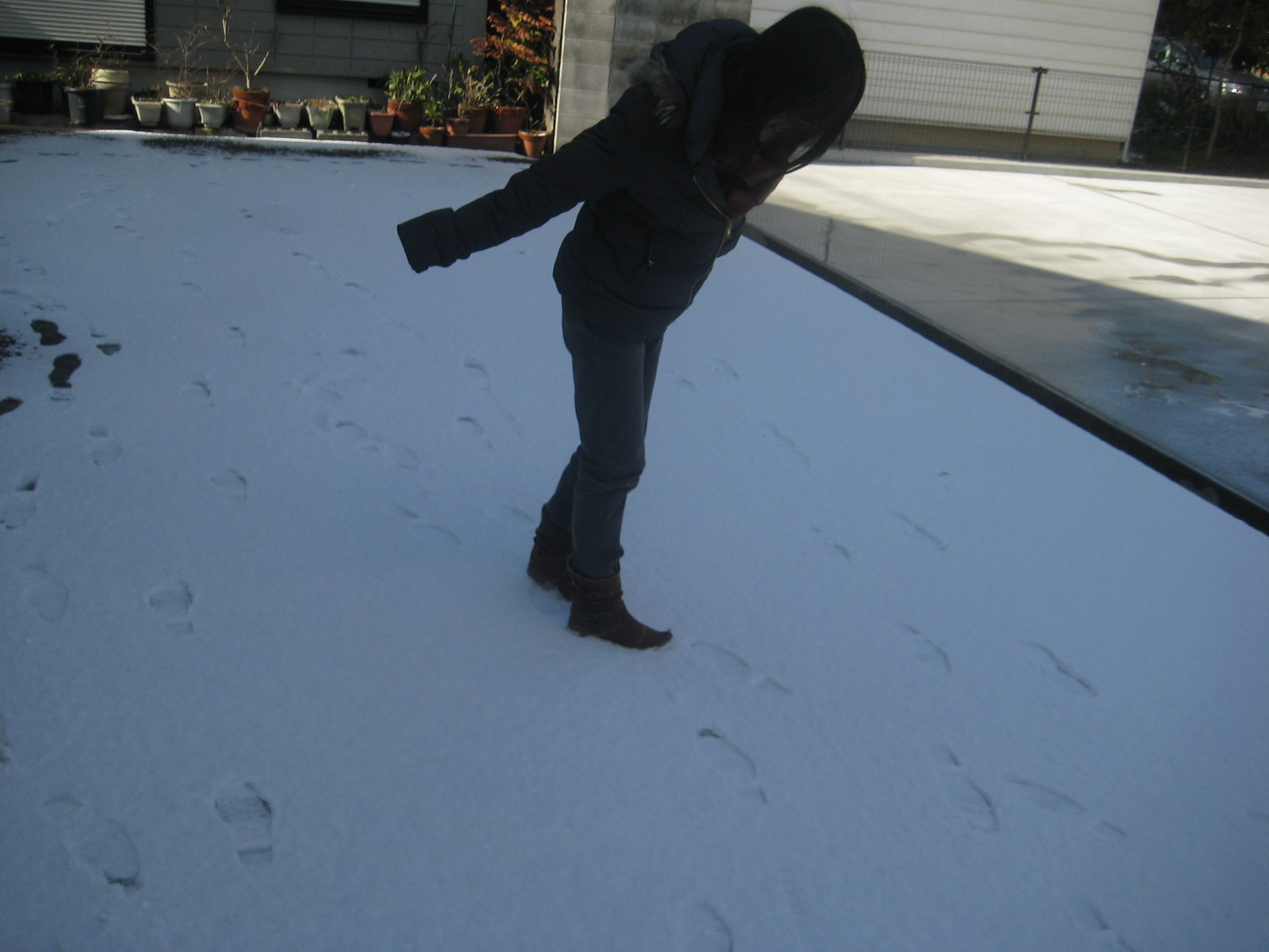 雪です_c0214750_14445042.jpg