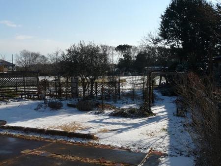 初雪♪♪♪_d0168170_10565267.jpg