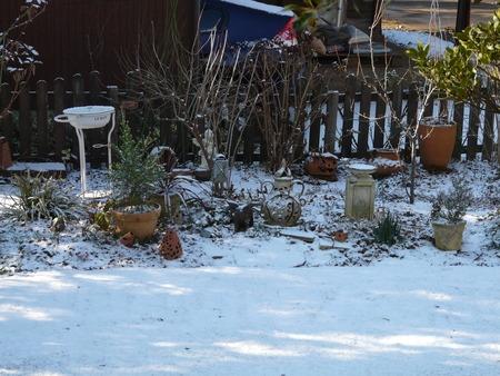 初雪♪♪♪_d0168170_1057546.jpg
