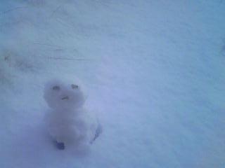 雪のため休業です_a0138985_9294923.jpg
