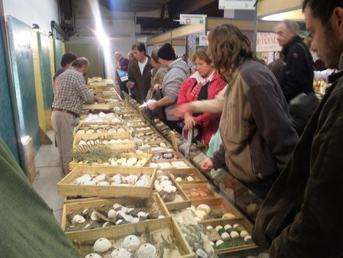 パリの農業祭_c0122889_16455031.jpg