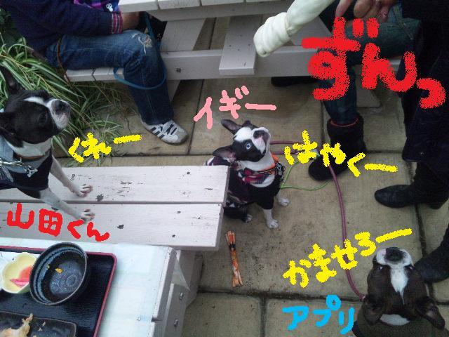 舎人でランチ&ランツアー★ランチ編_d0187891_17481982.jpg
